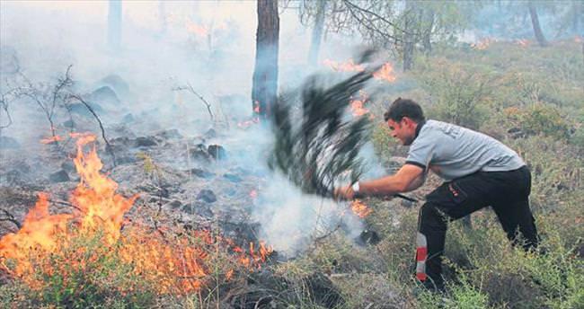Hatay'da 25 hektar ormanlık alan tamamen kül oldu