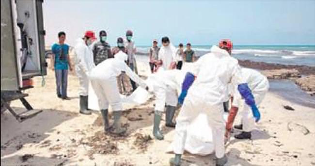 Akdeniz'e 2.5 yılda 10 bin kurban