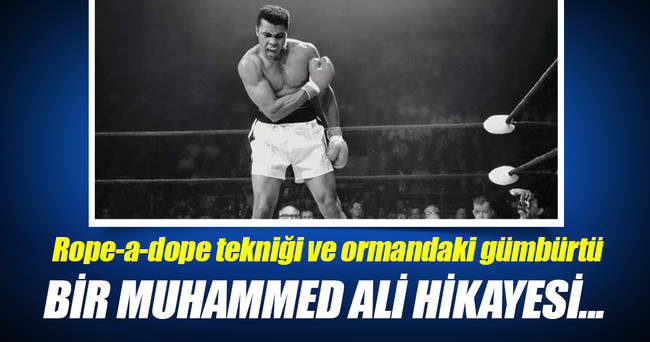 Rope-a-dope tekniği ve ormandaki gümbürtü: Bir Muhammed Ali hikayesi