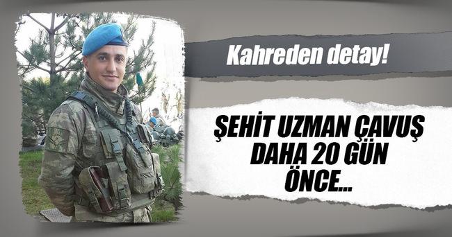 Şehit Uzman Çavuş Mesut Ardıç 20 gün önce evlenmiş