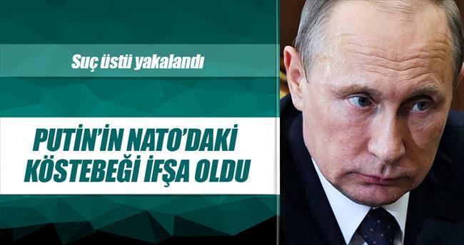 Putin'in NATO'daki köstebeği ifşa oldu