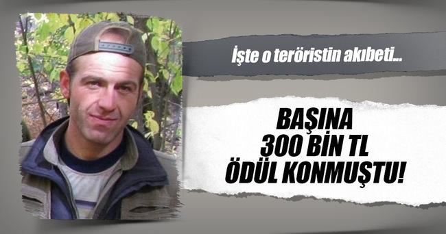 Gri listedeki PKK'lı sözde sorumlu ölü ele geçirildi