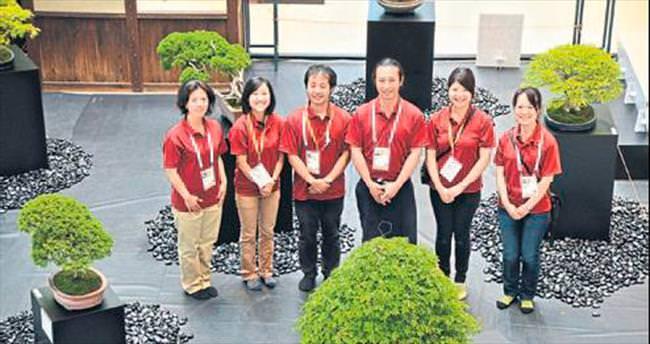 140 yıllık bonsai sergileniyor