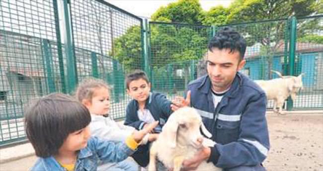 Evcil Hayvan Parkı yazın daha hareketli