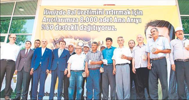 Büyükşehir'den 'ana arı' desteği