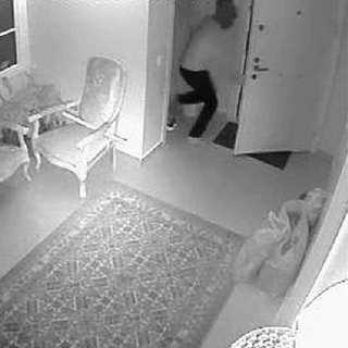 Köpekle karşılaşan hırsız böyle kaçtı