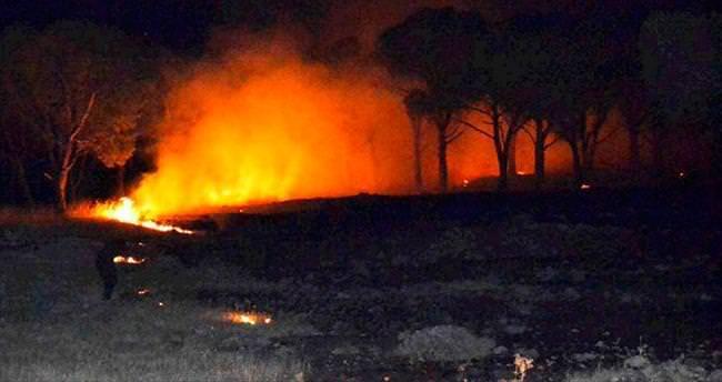 Ayvalık'taki orman yangını korkuttu