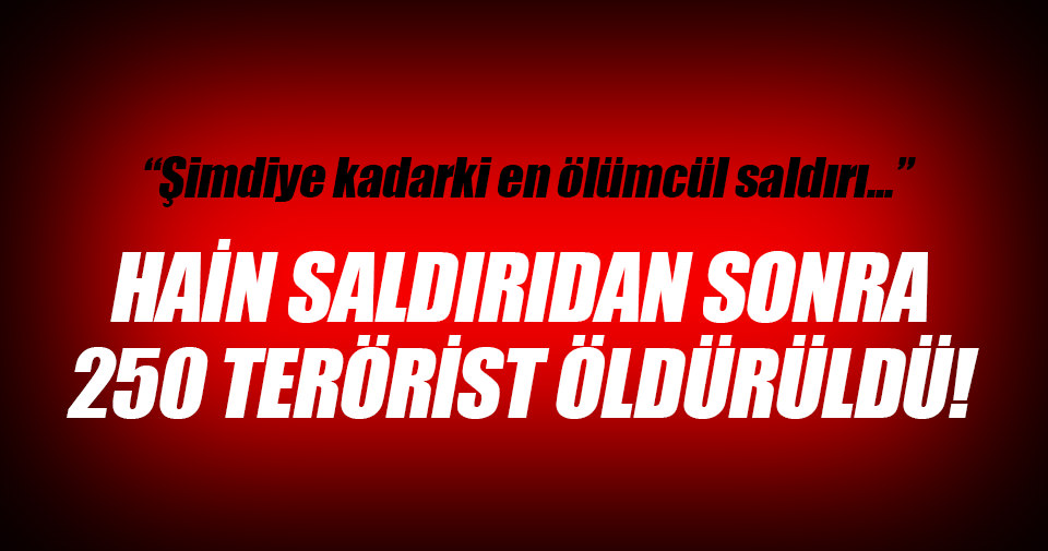 DAEŞ'e ağır darbe: 250 terörist öldürüldü