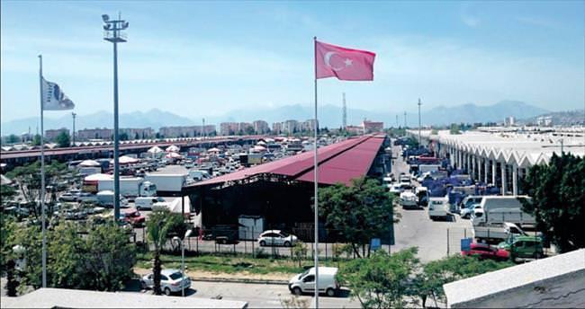 Antalya Hali'nde sevinç var