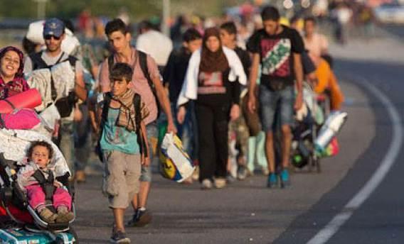 Danimarka polisi sığınmacı grubun 10 bin Euro'suna el koydu