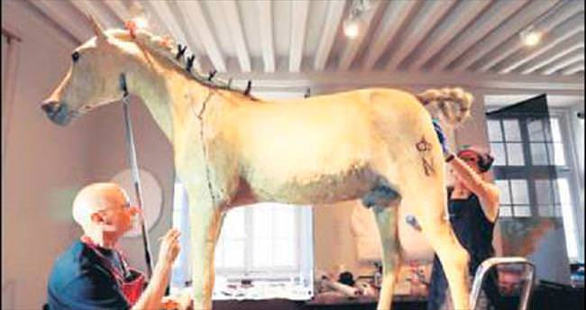 Napolyon'un atına yeniden restorasyon