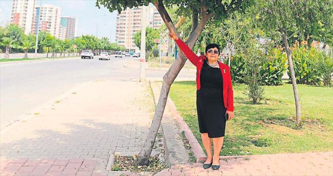 Adana'da ağaç olmak çok zor
