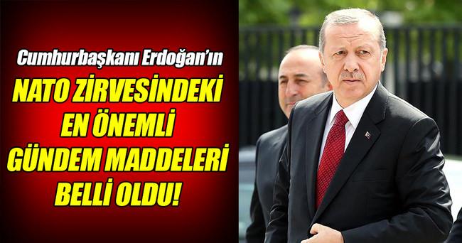 Erdoğan'ın NATO'daki gündemi 'terörle mücadele'