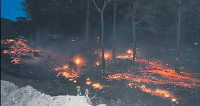 Kaz Dağları'nda orman yangını