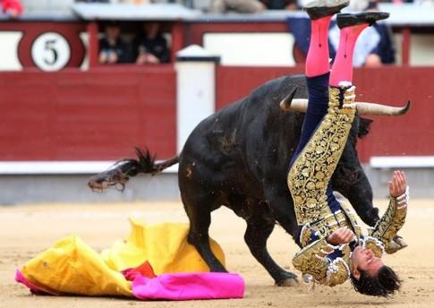 İspanya'da boğa, matadoru öldürdü