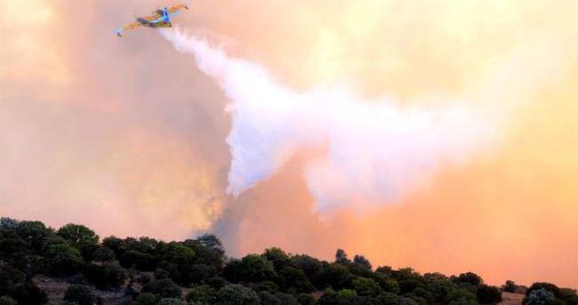 Bakan Eroğlu'ndan Bodrum'daki yangın açıklaması