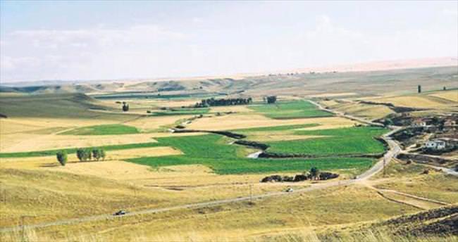 Tarım alanları gelişmiş ülkelerin kontrolüne geçti