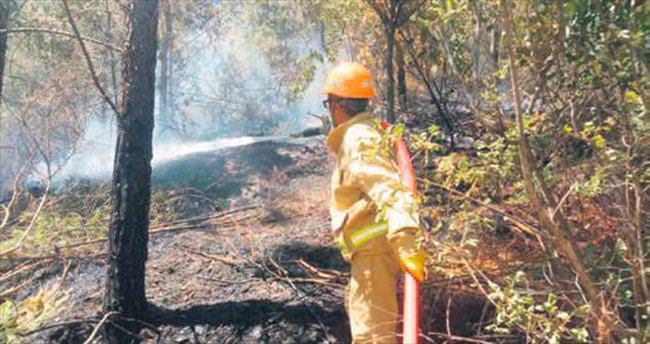 Alanya'da 3 hektar orman alanı kül oldu