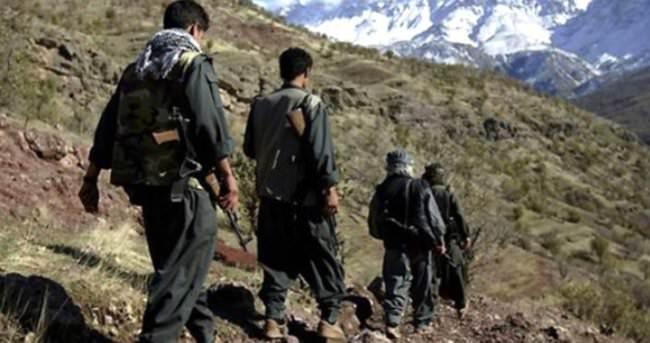 Bingöl'de PKK operasyonunda 9 tutuklama