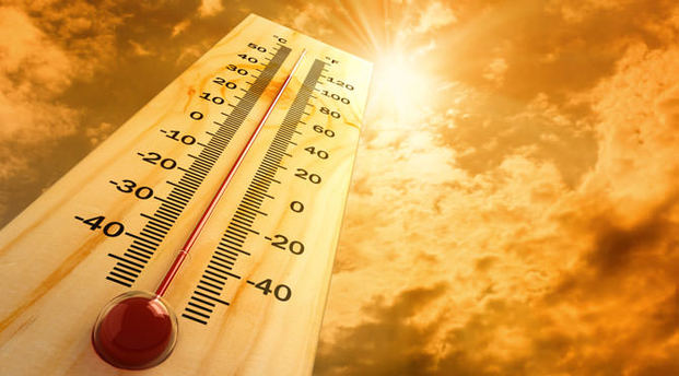 BEDAŞ'tan aşırı sıcaklara karşı önlem