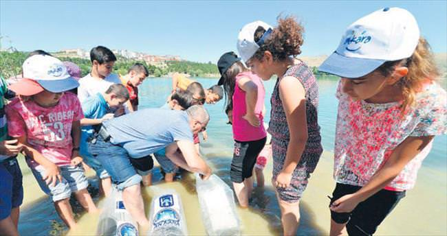 Büyükşehir Belediyesi göletlere sazan bırakıyor