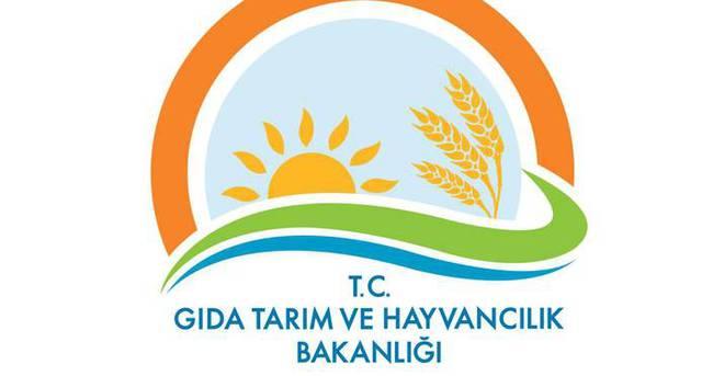 Gıda Tarım ve Hayvancılık Bakanlığı'nda FETÖ operasyonu