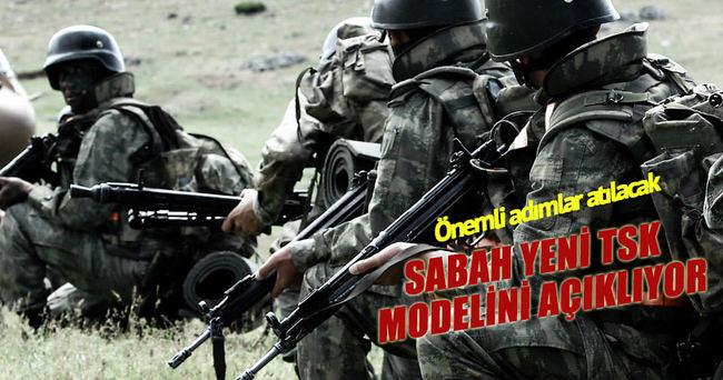 Sivil otoriteye bağlı uzman ordu