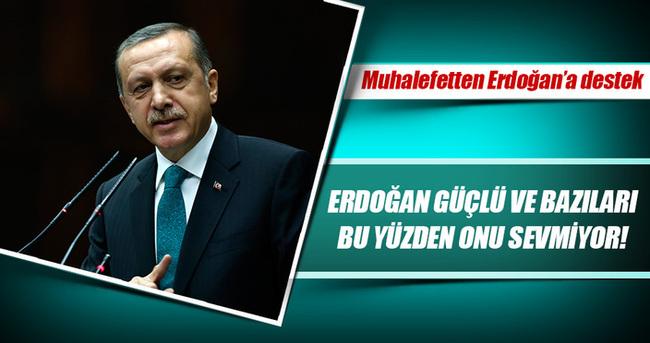 Macaristan muhalefetinden Erdoğan'a destek