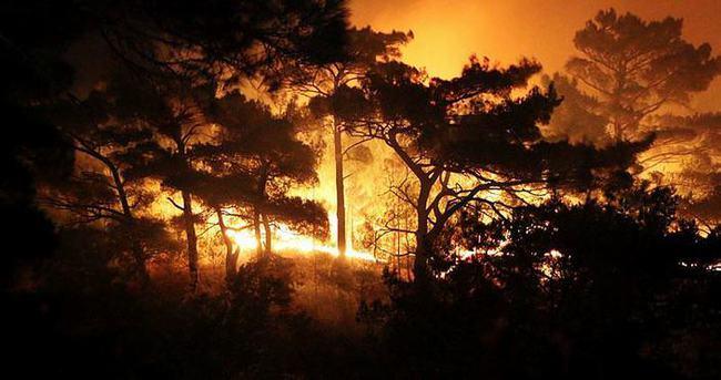 Kazdağları yanıyor