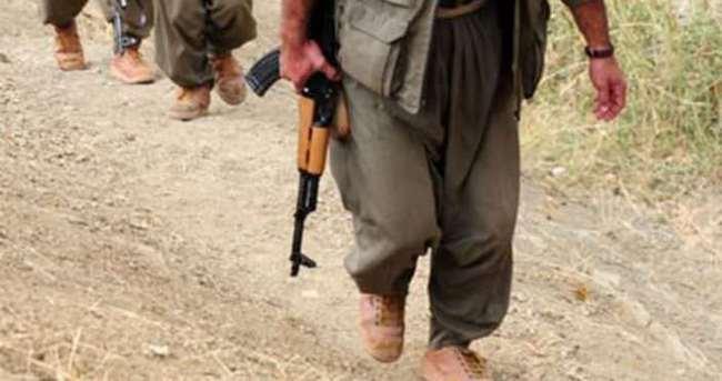 Bingöl'de bir terörist teslim oldu