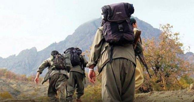Ahlat'ta 8 PKK'lı gözaltına alındı