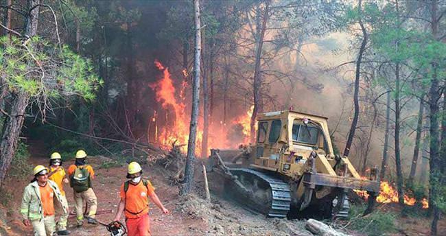 Ula'da 100 hektar orman kül oldu