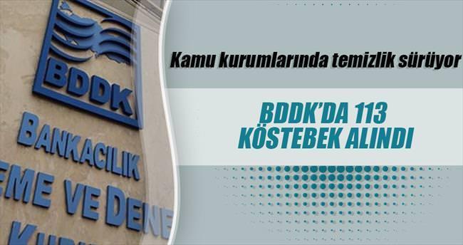 BDDK'da 113 'köstebek' alındı