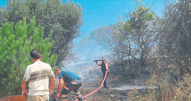 Çeşme'de vatandaşı korkutan yangın