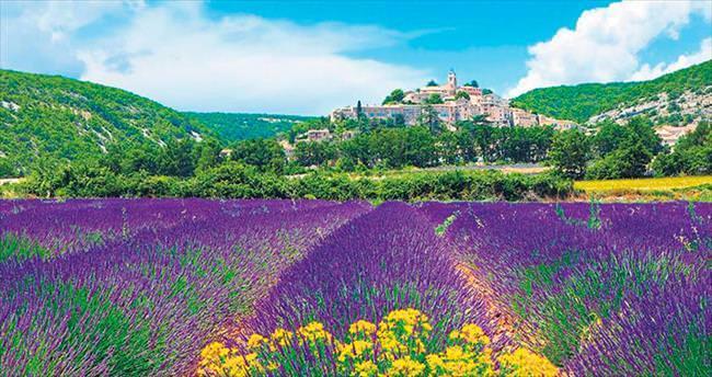 Keşke hiç bitmese denilen bir rüya Provence