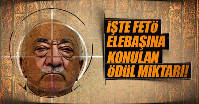 Gülen, kırmızı kategoride aranan en yaşlı terörist