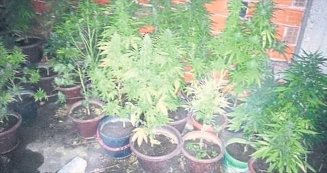 İzmir'de uyuşturucu baskını