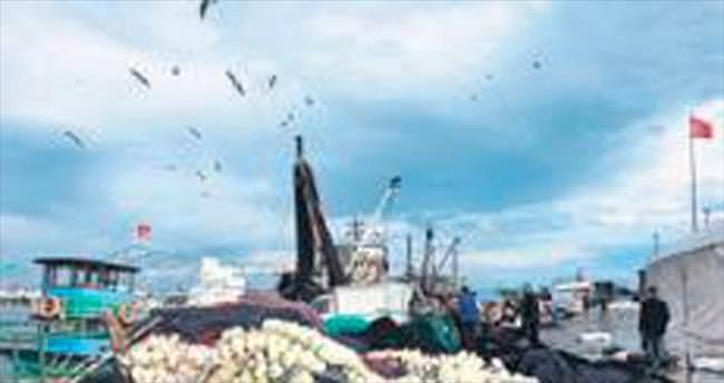 Egeli balıkçılar gün sayıyor