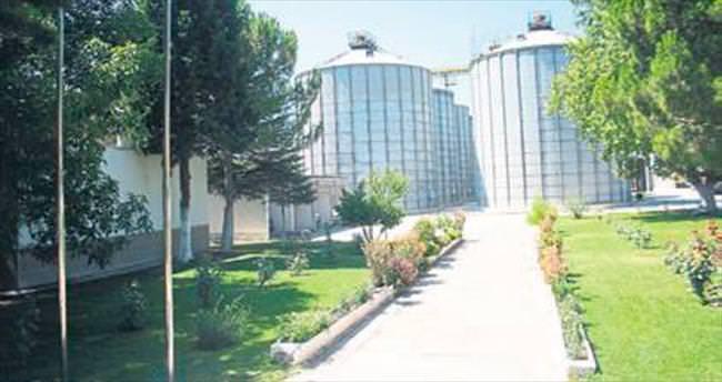 TMO Burdur çiftçisinden 5 bin ton buğday alımı yaptı