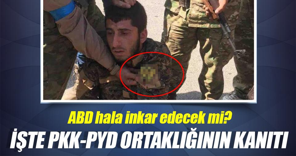 İşte PKK-PYD ortaklığının kanıtı