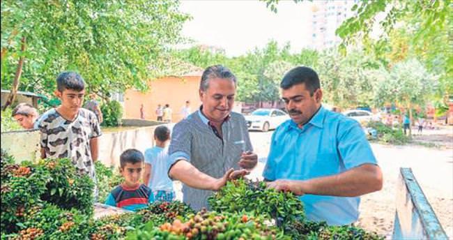 Zeytinköy'de çelenk aç