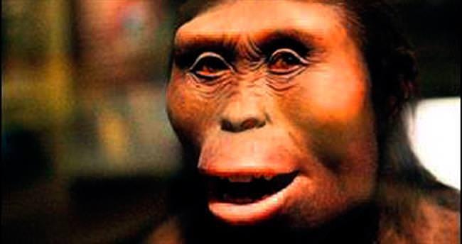 3.2 milyon yıl önce ağaçtan düşüp ölmüş