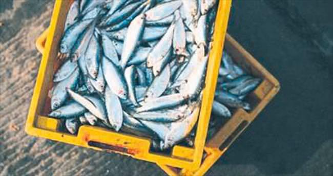 Denizden balık ömür boyu sağlık
