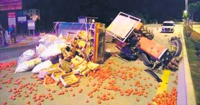 Traktör devrildi, 2 ton domates yola saçıldı