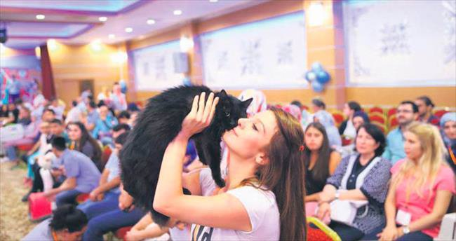 En güzel kedi: Pamuk
