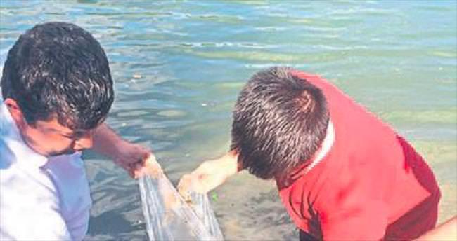 Göletlere 40 bin sazan balığı bırakıldı