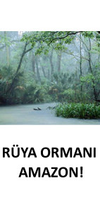 Rya orman Amazon