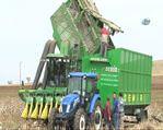 Diyarbakır'da makineli hasat pamuk üretimini artıdı
