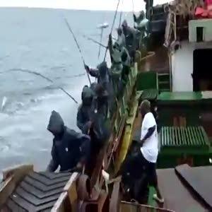 Peynir ekmek gibi balık tutuyorlar!