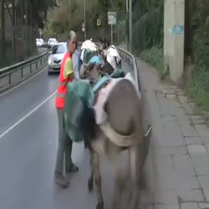 İstanbul'da fıkra gibi olay!